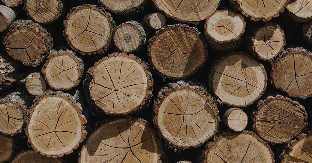 Empresas de maderas certificadas - Certificación forestal, Empresas con certificación de madera
