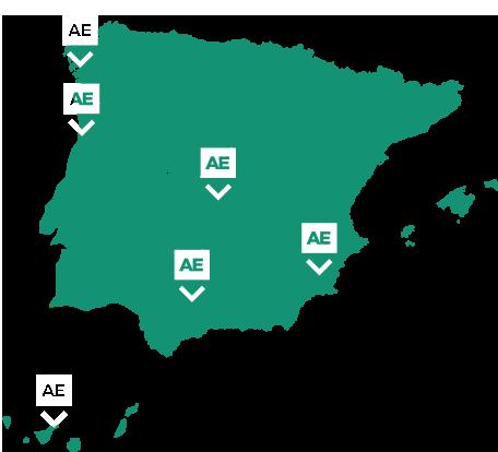 AE Maderas: Importadores y mayoristas madera aserradas